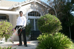 Residential Pest Control in Kendale Lakes, Florida